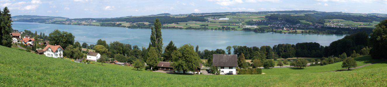 Ferienwohnung-Piringer-Panorama